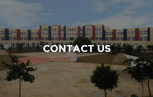 Contact us - King's College India